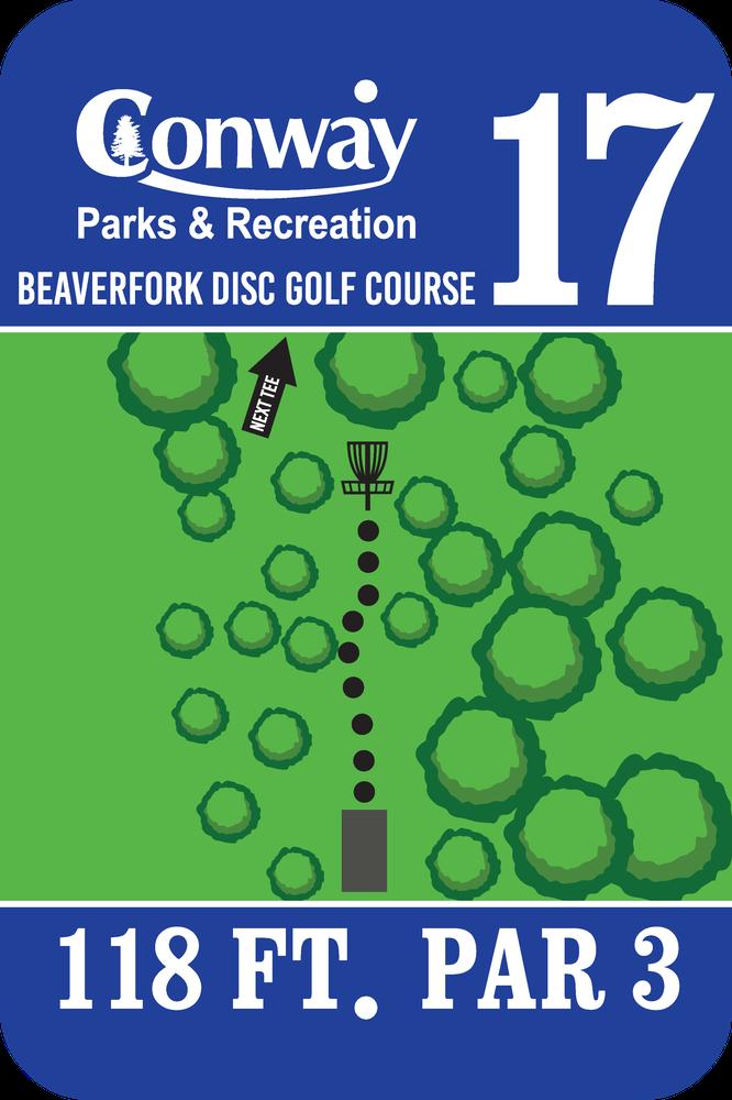 Disc Golf Course 17