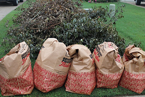 Residential Yard Waste